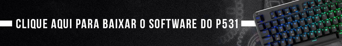 Software para controle do P531