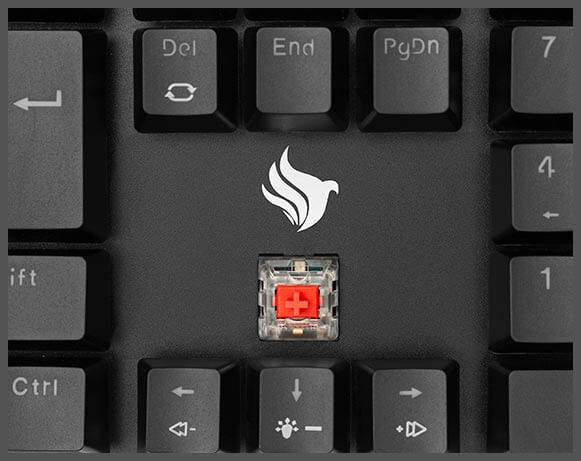 Switches Outemu MX Red